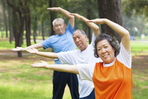 Seniors work out in a park